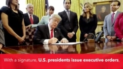 Explainer: Executive Order