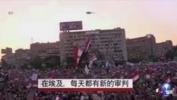 埃及铁腕镇压穆兄会,每天有新审判