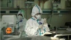 پاکستان: کیا لوگوں میں کرونا وائرس کا خوف ختم ہو گیا ہے؟