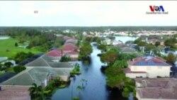 Irma Kasırgası Florida'da Milyonları Elektriksiz Bıraktı