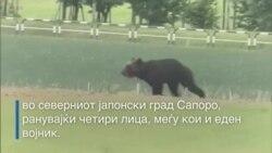 Убиена мечка во Јапонија
