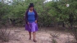 Efectos del cambio climático en Bolivia