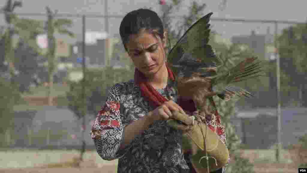 پاکستان کسٹم نے پہلی بار اتنی بڑی تعداد میں نایاب پرندوں کی اسمگلنگ روکی ہے۔