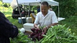 Refugee Farmers Reestablish Ties to the Land, Nourish Themselves and Neighbors