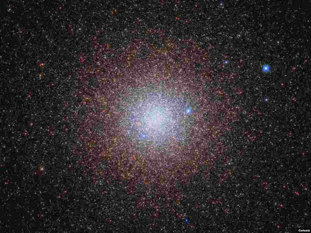 Las estrellas del cúmulo globular NGC 6441 brillan pacíficamente en el cielo nocturno, a unos 13.000 años luz del centro galáctico de la Vía Láctea. [Foto: Cortesía NASA].
