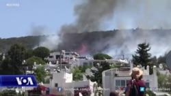 Turqia evakuon turistët e tronditur nga zjarret në Bodrum