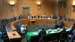 美议员: 应该向所有中国货物征收20%关税