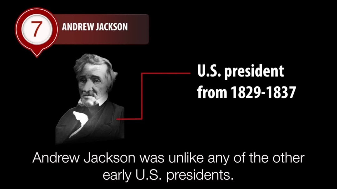 Andrew Jackson Loved Hated