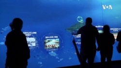 High Tech Aquarium Features Virtual Touch Experience