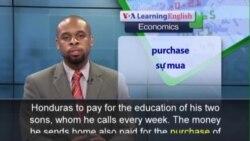 Phát âm chuẩn - Anh ngữ đặc biệt: Diaspora Finance Powers Global Development (VOA)