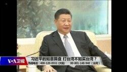海峡论谈:习近平的如意算盘 打台湾不如买台湾?