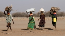 Kenya: augmentation de la violence contre les femmes