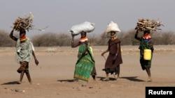 ພວກຜູ້ຍິງພາກັນໄປຂົນເອົາຟືນຢູ່ນອກສູນອົບພະຍົບ Kakuma ໃນເມືອງ Turkana, ທາງຕາເວັນຕົກສຽງເໜືອຂອງນະຄອນຫລວງ ໄນໂຣບີຂອງເຄັນຢາ (ວັນທີ 1 ກຸມພາ 2018)