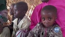 На суботу, 20 червня, припадає День біженців. Відео