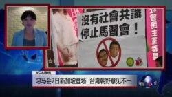 VOA连线:习马会7日新加坡登场 台湾朝野意见不一