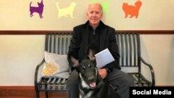 جو بایدن، رئیس جمهور منتخب آمریکا با سگش «میجر»