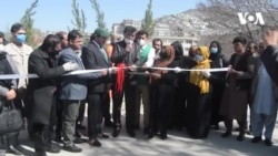 نهال شانی در شهر کابل