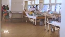 Une épidémie de fièvre de Lassa tue plus que le coronavirus