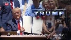 全球政治竞选利用美国专业知识赢得选举