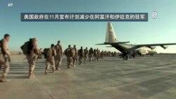 反映美国政府政策立场的视频社论:美国将减少在阿富汗和伊拉克的驻军