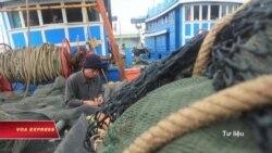 TQ cấm đánh cá ở Biển Đông, Việt Nam phản đối