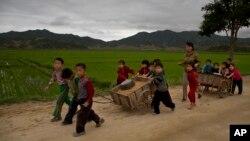 북한 함경도 시골의 한 소학교 아이들이 교사(교원)와 함께 작업을 하고 있다 (2014년 6월 20일 촬영)