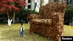 A child walks to an installation made from fallen leaves by college students, in shape of a sofa, to call for people's attention to environment protection, in Hangzhou, Zhejiang province, China, Dec. 6, 2016.