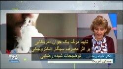 تایید مرگ یک جوان آمریکایی بر اثر مصرف سیگار الکترونیکی؛ توضیحات شیده رضایی