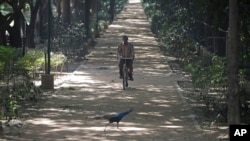 India Avian Flu: A peacock crosses a pathway as a park worker rides a bicycle inside the closed Deer park in New Delhi, India, Friday, Oct. 21, 2016.
