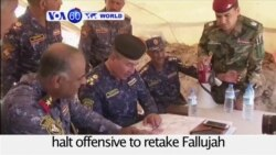 VOA60 World PM - Iraqi army halts offensive to retake Fallujah after encountering heavy resistance from Islamic State