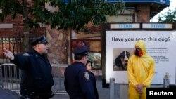 Ébola Nova Iorque
