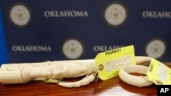 Pieces of carved ivory are on display at the state Capitol in Oklahoma City, following a news conference Tuesday, Feb. 10, 2015, held by Democratic state Rep. Mike Shelton, who is sponsoring a bill which he says bill is designed to help curb illegal poaching of wildlife in Africa. (AP Photo/Sue Ogrocki)