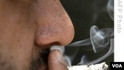 Pušenje: Pravo ili privilegija?