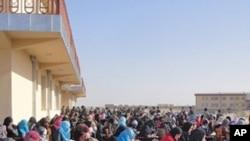 Tayeynta Waxbarashada Somalia