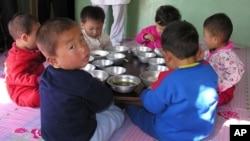 1/3 trẻ em dưới 5 tuổi ở Bắc Triều Tiên có dấu hiệu còi cọc