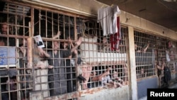 FILE - Inmates are seen behind bars in Aleppo's main prison, May 22, 2014.