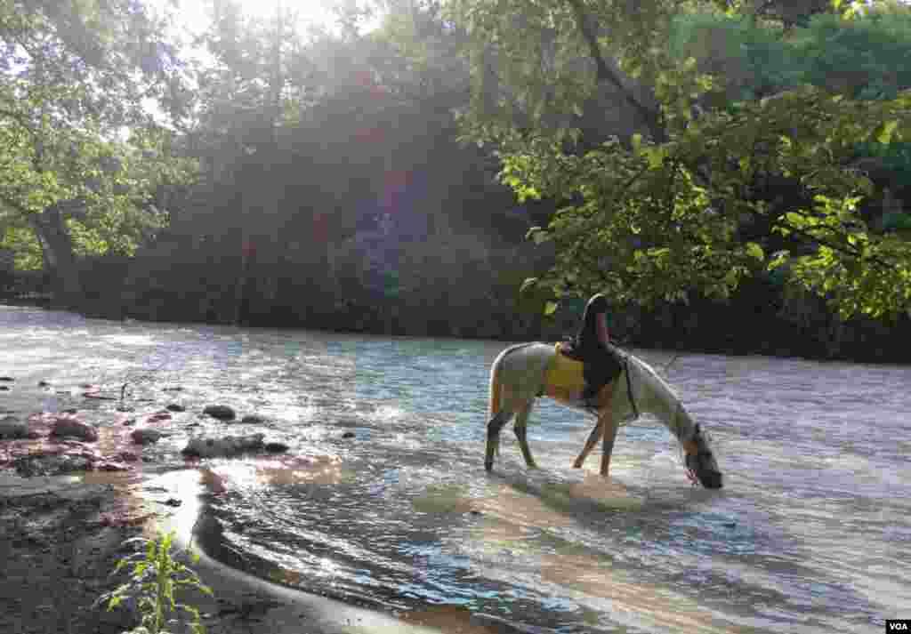 اسب سواری در چالوس عکس: آرش محمدی (ارسالی از شما)