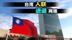 海峡论谈:台湾入联 进退两难