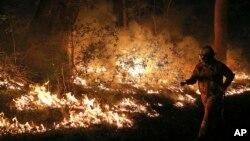 Các đám cháy rừng đã thiêu rụi hàng trăm nhà cửa và gây nhiều thiệt hại ở Úc, tháng 10/2013