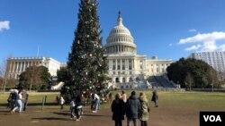 遊人在國會聖誕樹前駐足和拍照。 (2018年12月24日)
