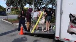 Rescatan mascotas de Puerto Rico