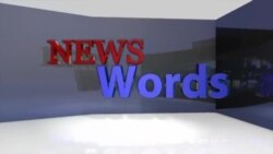 News Words: Obamacare