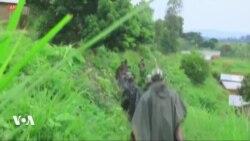 Offensive de l'armée congolaise contre des rebelles en Ituri