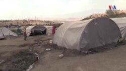 Şırnaklı 'Mülteciler' Kendi Çadır Kentlerinde