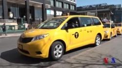 Sariq taksi haydovchisi o'zini osdi
