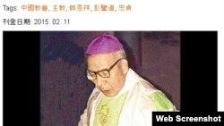 师恩祥主教(网络截频)