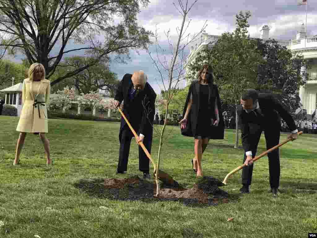 Les présidents Donald Trump, son épouse Melania, et Emmanuel Macron et son épouse Brigitte, plantent un arbre à la Maison Blanche au début de la première visite officielle du leader français à Washington, le 23 avril 2018. (VOA/Steven Herman)
