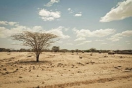 Kenya's Turkana region shows effects of severe drought affecting the Horn of Africa.
