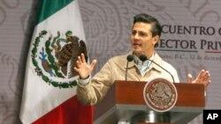 El presidente Enrique Peña Nieto presentó su plan de seguridad que incluye mantener al Ejército y la Marina en la calle.