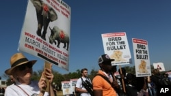 Activists march at the site of the Convention on International Trade in Endangered Species of Wild Fauna and Flora (CITES) in Johannesburg, South Africa, Sept 24, 2016.
